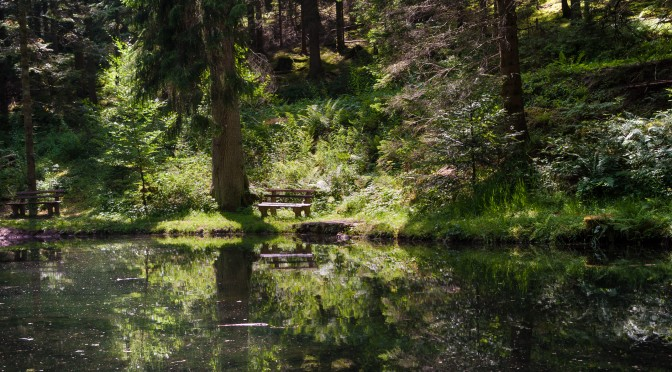 Dorothy Leigh Sayers – Der Pfirsichdieb